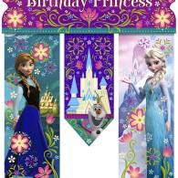 frozen disney birthday party banner