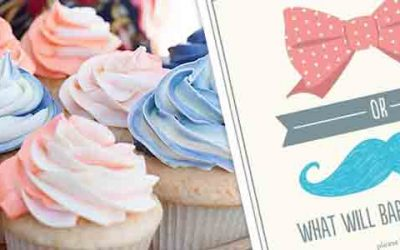 baby shower gender reveal invitations ideas